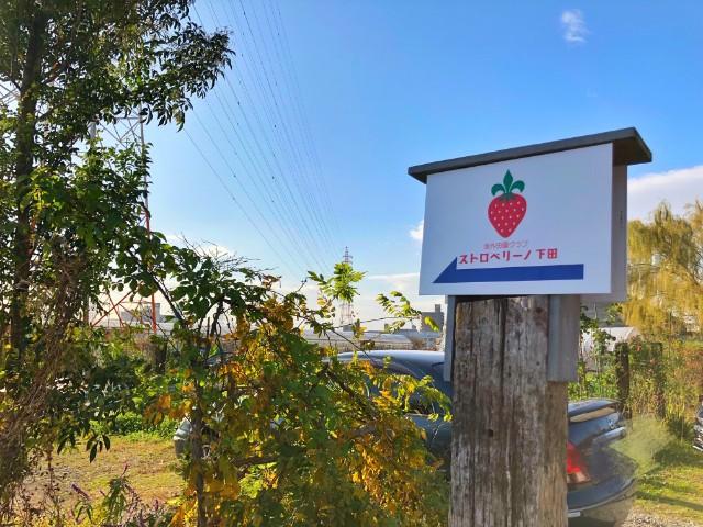 平針ランチ【農園レストラン suburbian(サバーヴィアン)】イチゴ農園