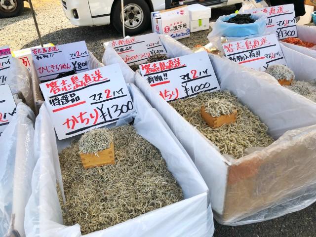 覚王山イベント【日泰寺縁日】魚屋1