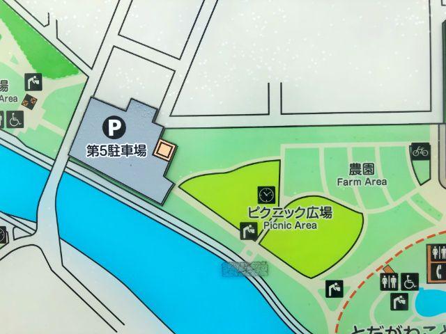 【とだがわこどもランド(戸田川緑地)】バーベキュー場ピクニック広場2
