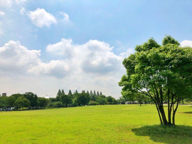 【とだがわこどもランド(戸田川緑地)】広い敷地3