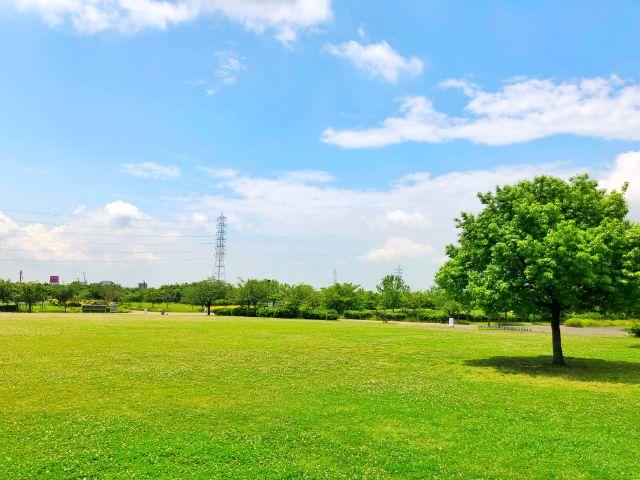 【とだがわこどもランド(戸田川緑地)】中央地区右岸芝生広場2