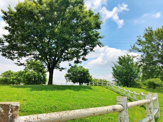 【戸田川緑地】名古屋最大級の公園です